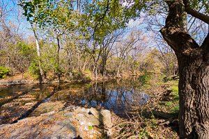 Landscape Scenery Forest Park Estates Shawnee